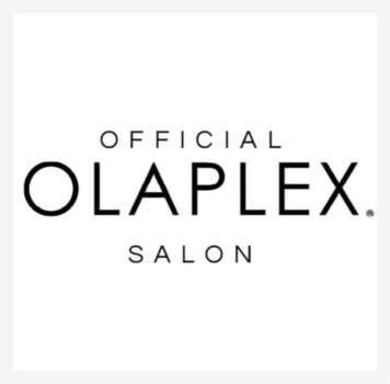 Official Olaplex Salon - Ecology Organic Hair